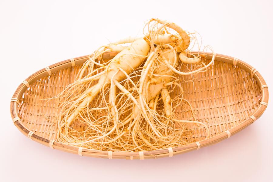 朝鮮ニンジンの5倍以上の治癒効果があるトンカットアリ